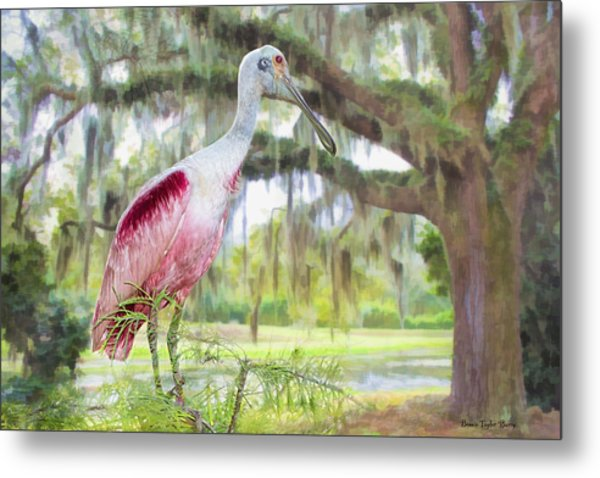 Scene From The Deep South Metal Print