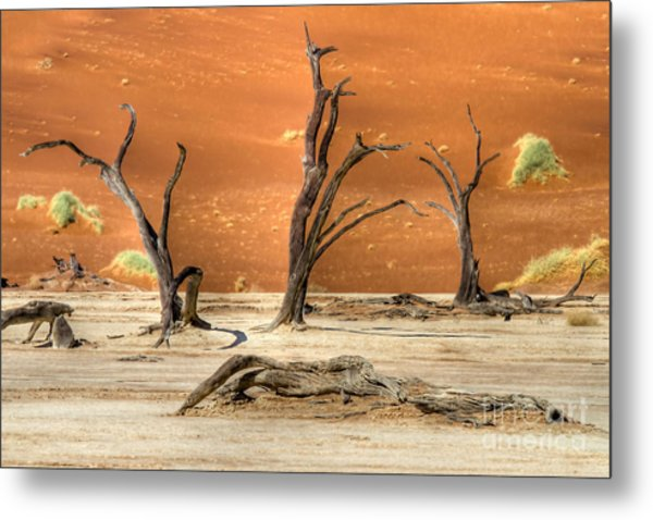 Scenic View At Sossusvlei Metal Print
