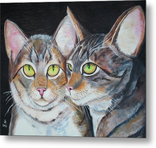 Scheming Cats Metal Print