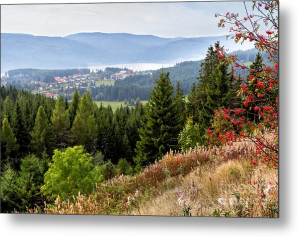 Schluchsee In The Black Forest Metal Print