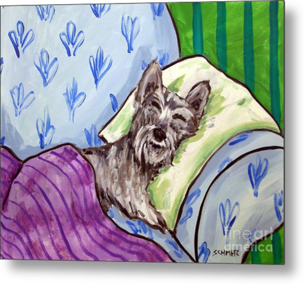 Schnauzer Sleeping Metal Print by Jay  Schmetz