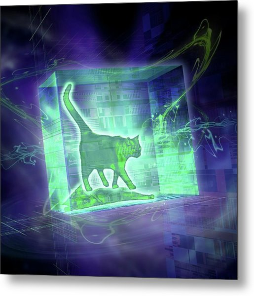 Schrodinger's Cat Metal Print by Harald Ritsch