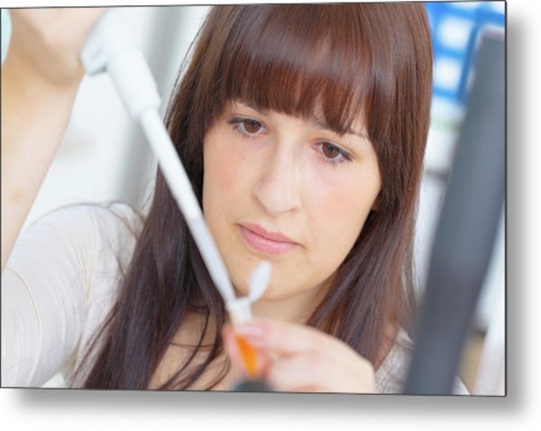 Science Student Using Pipette Metal Print by Wladimir Bulgar/science Photo Library