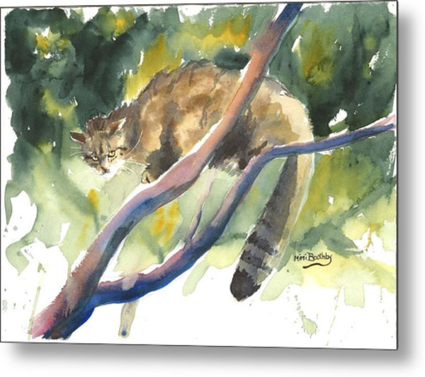 Scottish Wild Cat In A Tree Metal Print
