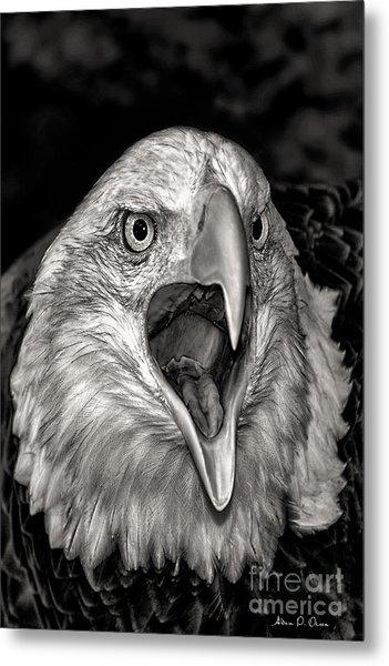 Screamin Eagle Metal Print