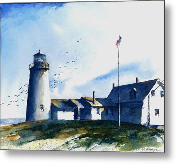 Sea Birds - Pemaquid Lighthouse Metal Print