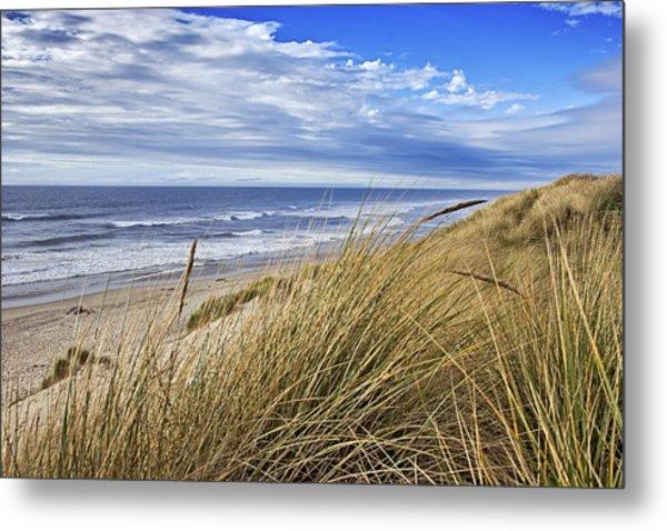 Sea Grass And Sand Dunes Metal Print