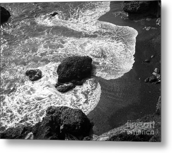 Sea Lion Cove Metal Print