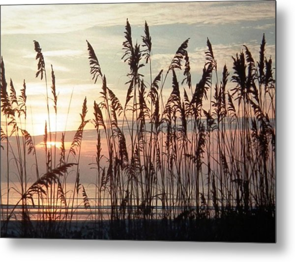 Fabulous Blue Sea Oats Sunrise Metal Print