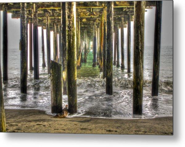 Seacliff Pier Metal Print