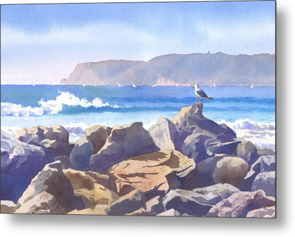 Seagull And Point Loma Metal Print
