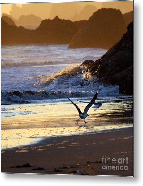 Seagulls On Beach Metal Print by Irina Hays