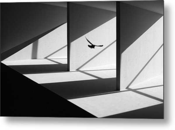 Searching Way Out Metal Print