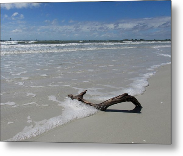 Seashore Driftwood Metal Print by Rosie Brown