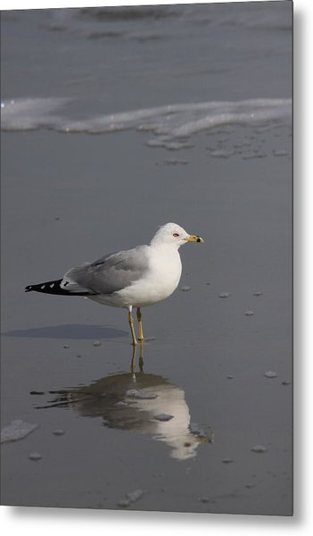 Seaside Sentinel Metal Print