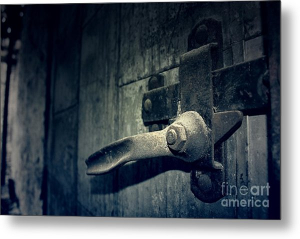 Secrets Within Metal Print