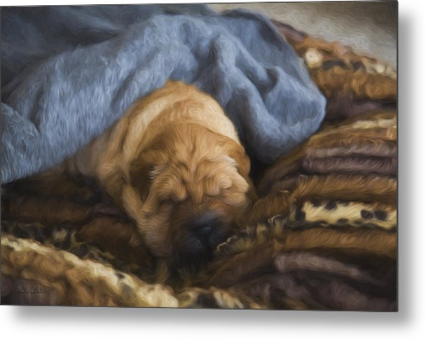 Security Blanket Metal Print