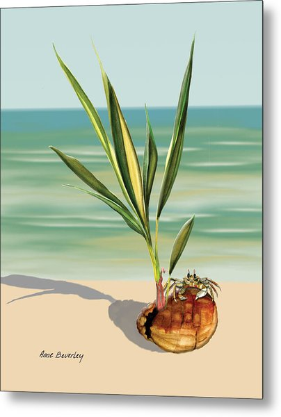 Seedling Floating Ashore Metal Print