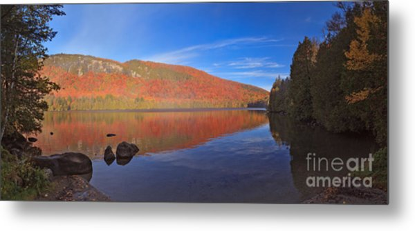 Seeing Red At Jobs Pond Metal Print