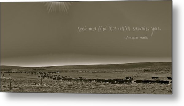 Seek And Find Metal Print