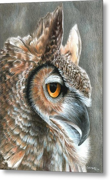 Sepia Owl Metal Print