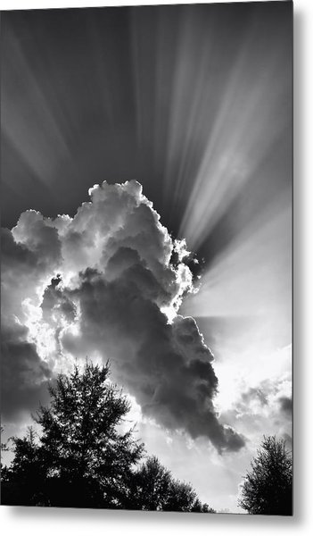 Metal Print featuring the photograph September Rays by Ben Shields
