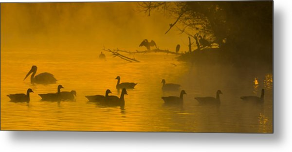Sepulveda Dam Morning Metal Print