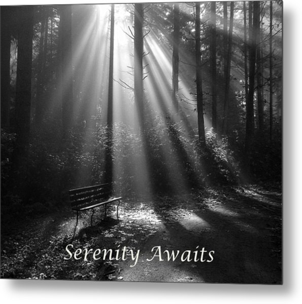 Serenity Awaits Metal Print