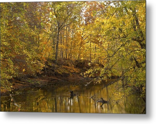Serenity Metal Print by Kimberly Davidson