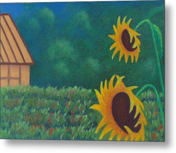 Sergi's Sunflowers Metal Print