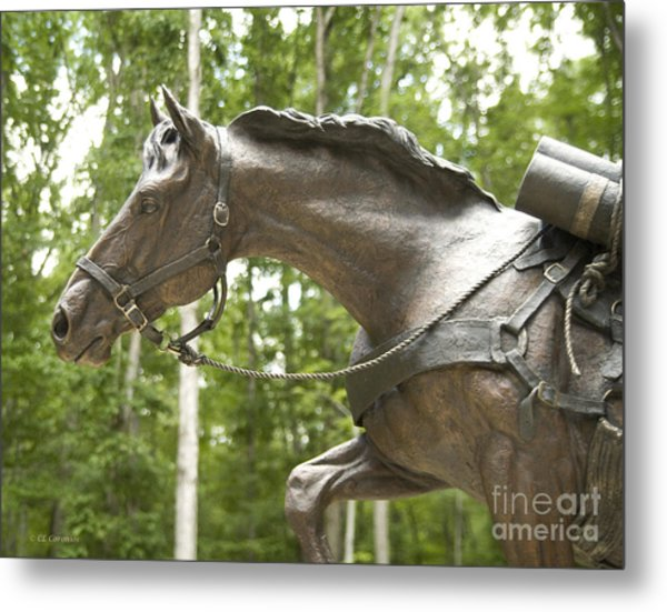 Sgt Reckless Metal Print