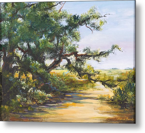 Shaded Path Metal Print