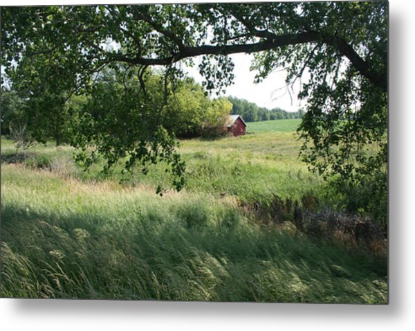 Shaded View - Full Color Metal Print