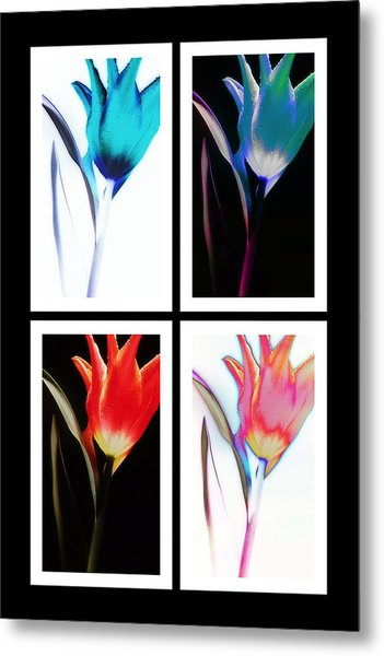 Shades Of Colour  Metal Print