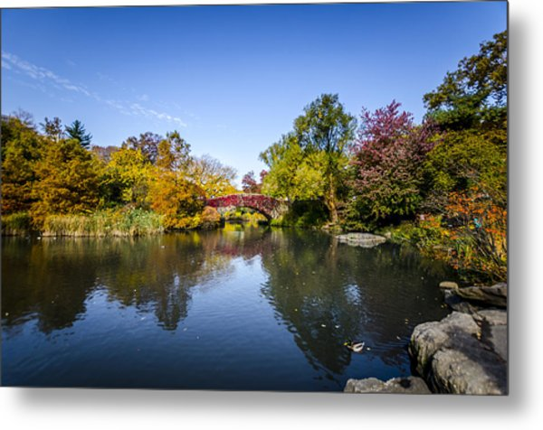 Shades Of Fall Metal Print by Johnny Lam