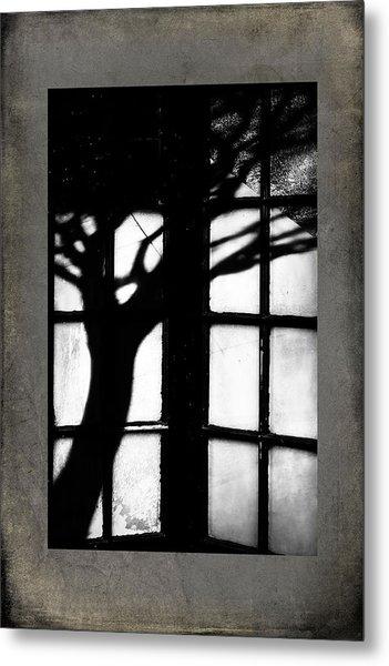Shadow Metal Print by Bobbi Feasel