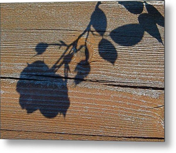 Shadow Of Beauty Metal Print
