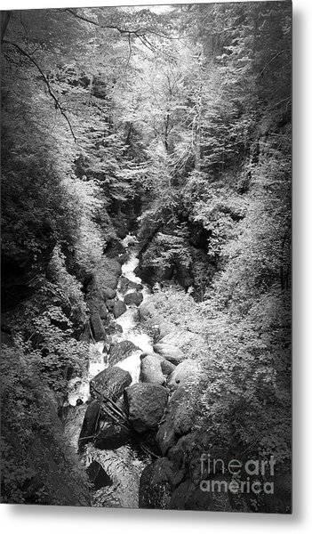 Shadowed Stream Metal Print