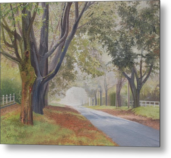 Shadow And Fog Down Beautiful Atlantic Avenue Metal Print