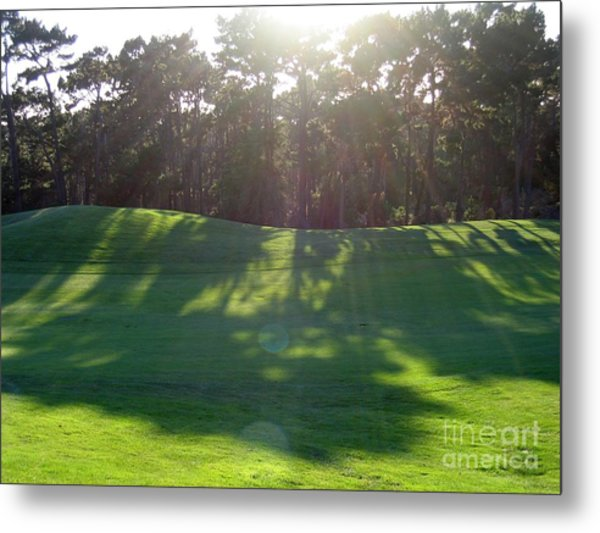 Shadows At Poppy Hills Metal Print