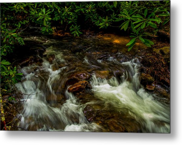 Shady Brook Metal Print by Russ Burch