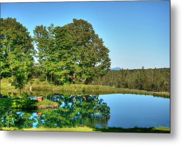 Shady Day Metal Print