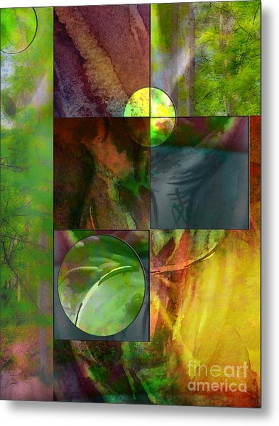 Shapes In Nature Metal Print