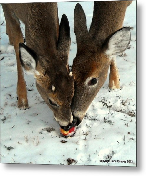 Sharing The Love Metal Print