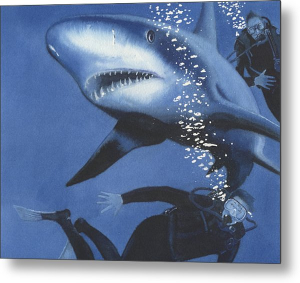 Sharkbait Metal Print by Denny Bond