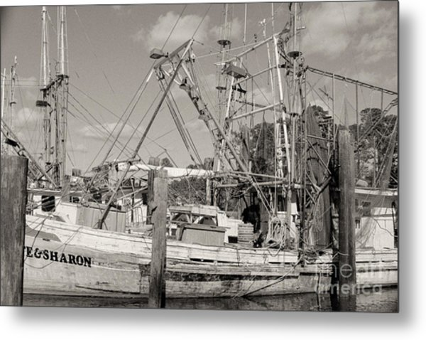 Sharon Metal Print by Russell Christie
