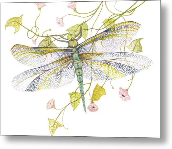 Sheer Wings  / Sold Metal Print