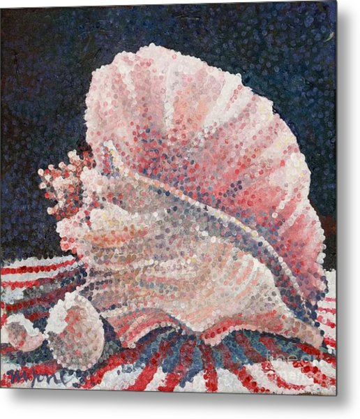 Shell Collection Metal Print by Micheal Jones