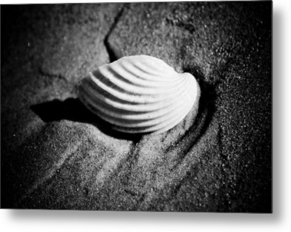 Shell On Sand Black And White Photo Metal Print