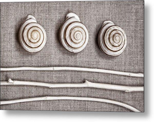 Shells And Sticks Metal Print